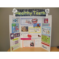 Healthy Teeth Display